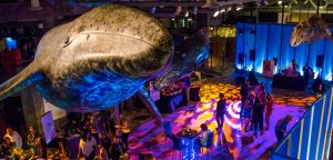 The Party at the Monterey Bay Aquarium