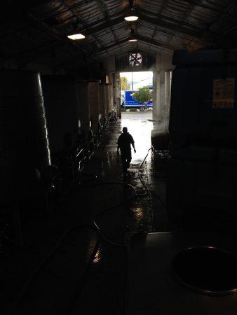 bonny-doon-vineyard-cellar-shadow-Nicole-Walsh