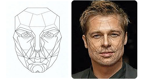 golden-ratio-brad-pitt
