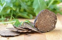 perigord-truffle